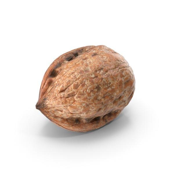 Thumbnail for Walnut