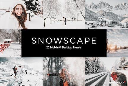 20 предустановок и LUT Snowscape Lightroom