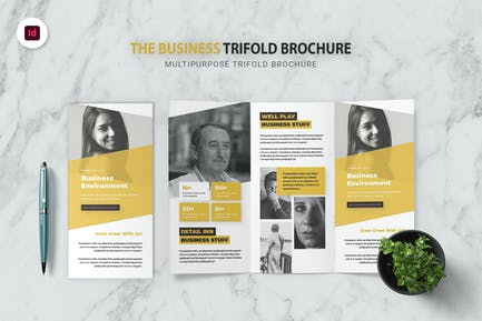 Business Environment Trifold Brochure