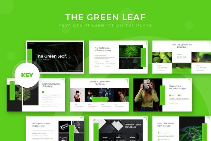 Thumbnail for Зеленый лист - Шаблон Keynote