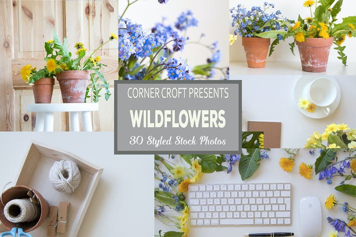 Thumbnail for Wildflower Styled Stock Photo Bundle