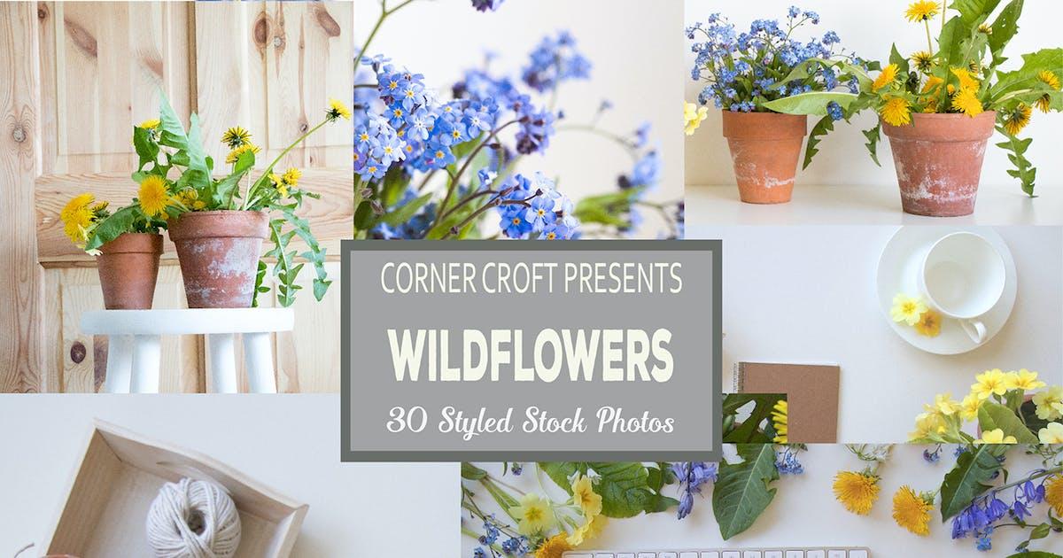 Download Wildflower Styled Stock Photo Bundle by cornercroft