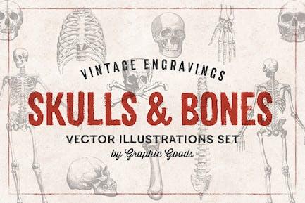 Skulls & Bones - Engraving Style Illustration Set