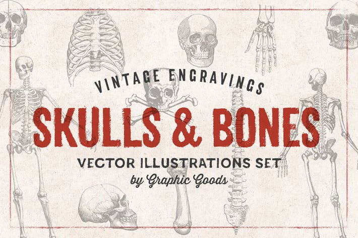 Thumbnail for Skulls & Bones - Engraving Style Illustration Set