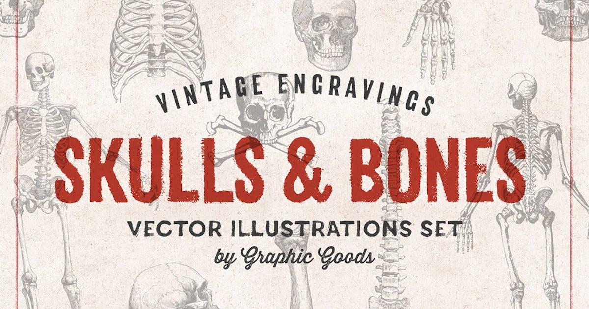 Skulls & Bones - Engraving Style Illustration Set by GraphicGoods