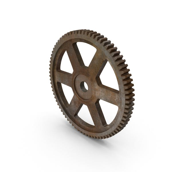 Rusty Spur Gear