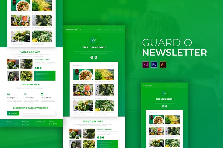 Cover Image For The Guardio | Newsletter Template