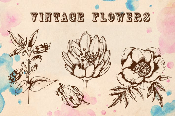 Thumbnail for Vintage Flowers