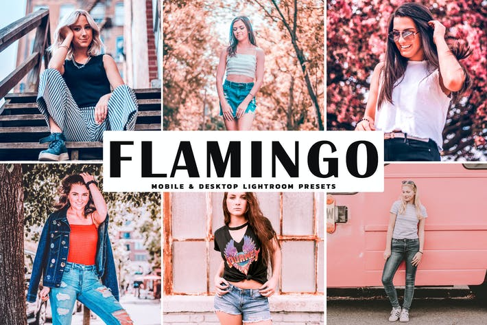 Thumbnail for Flamingo Mobile & Desktop Lightroom Presets