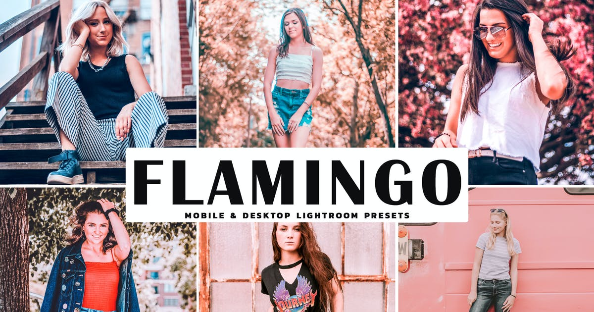 Download Flamingo Mobile & Desktop Lightroom Presets by creativetacos
