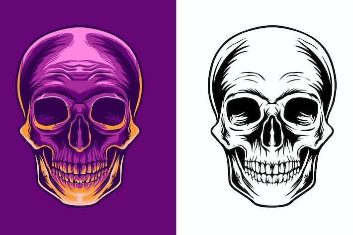 skull head illustration