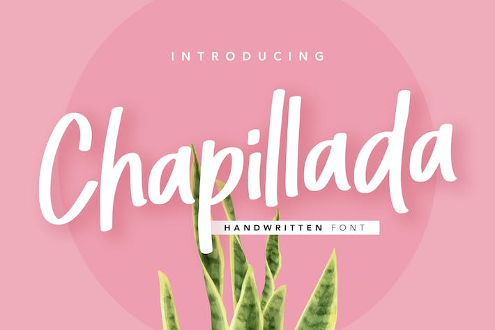Thumbnail for Chapillada Display Font