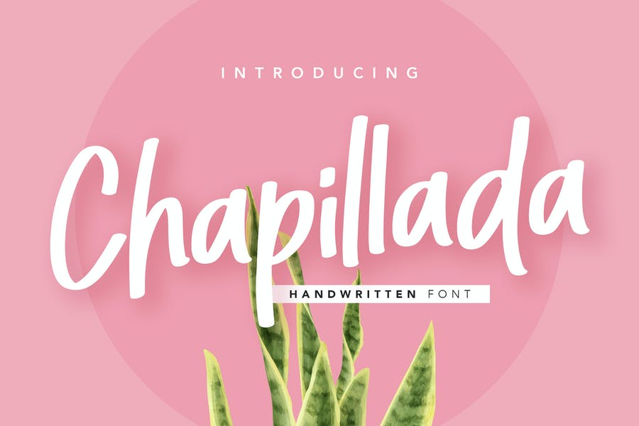 Chapillada Display Font