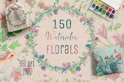 150 Aquarell-Blumen+Bonus