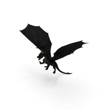 Schwarzer Drache fliegen
