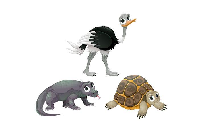 Thumbnail for Funny Australian Animals