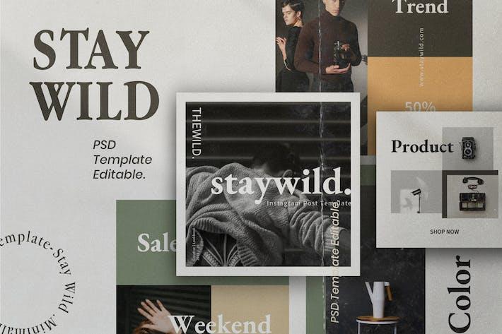 Thumbnail for Staywild - Brand Social Media Kit Pack 2