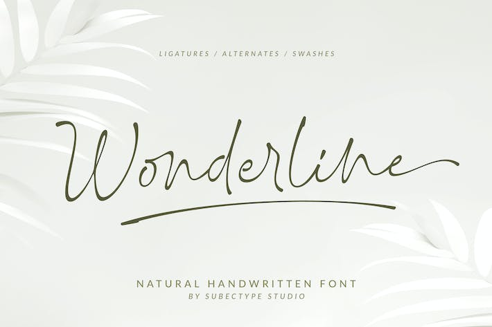 Cover Image For Firma Wonderline