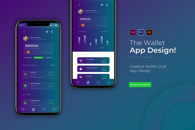 The Wallet | App Design Template