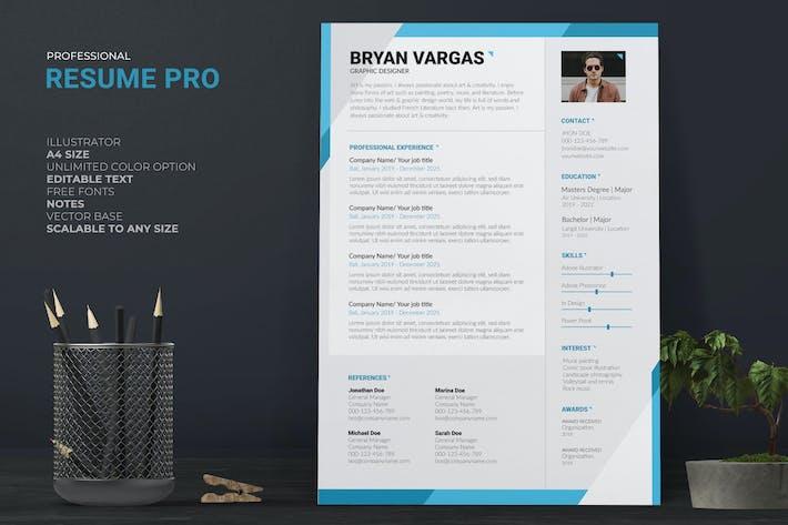 Clean CV / Resume Pro