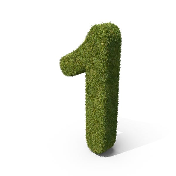 Cover Image for Grass Number 1