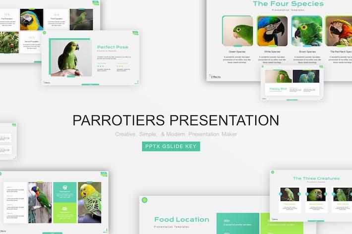 Thumbnail for Шаблон презентации попугаев