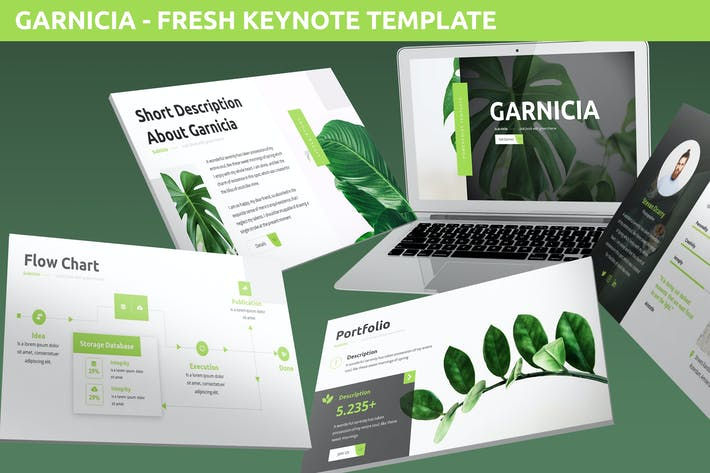 Thumbnail for Garnicia - Fresh Keynote Template