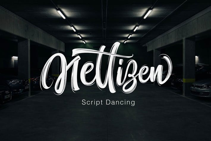 Thumbnail for Nettizen - Modern Script