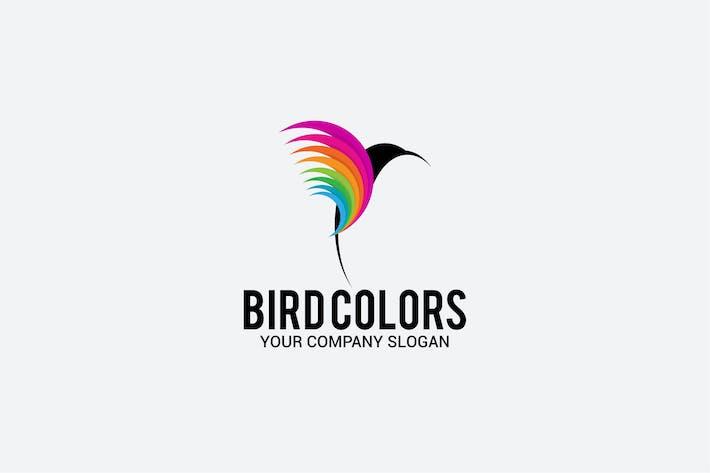 Thumbnail for bird colors