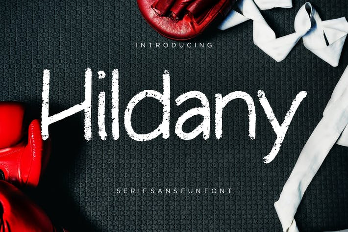 Cover Image For Hildany Sans Fun Font