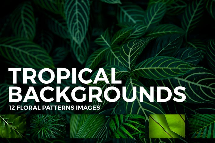 Thumbnail for 12 Tropical Leaves Backgrounds
