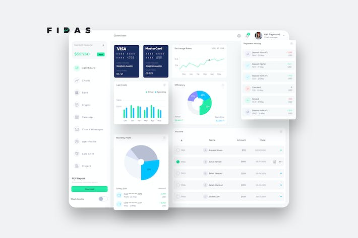Thumbnail for FIDAS Finance Dashboard Ui Light - P