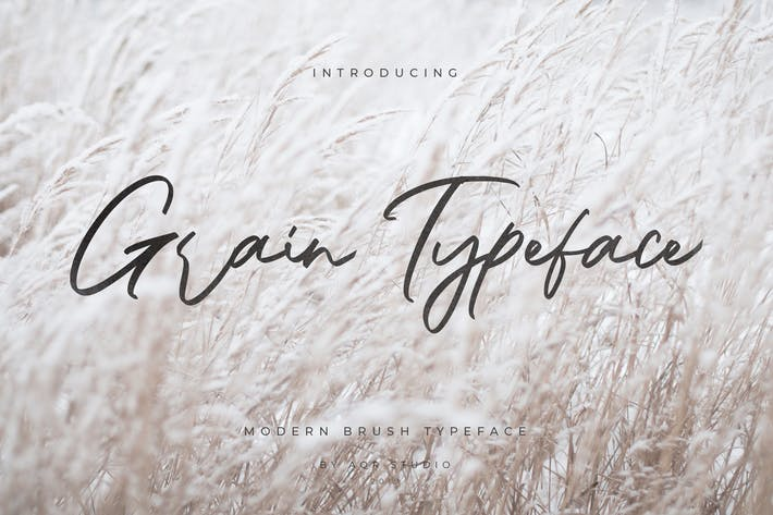 Cover Image For Grain Typeface