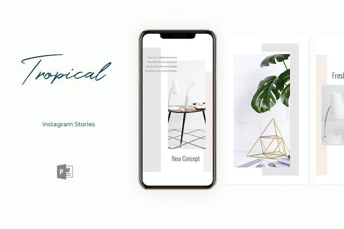 Thumbnail for Тропические истории Instagram Powerpoint