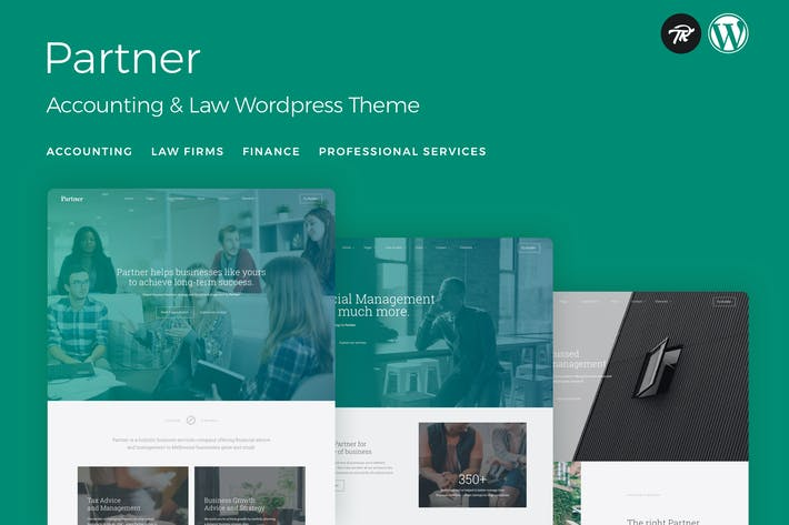 Thumbnail for Partner - Accounting and Law WordPress Theme