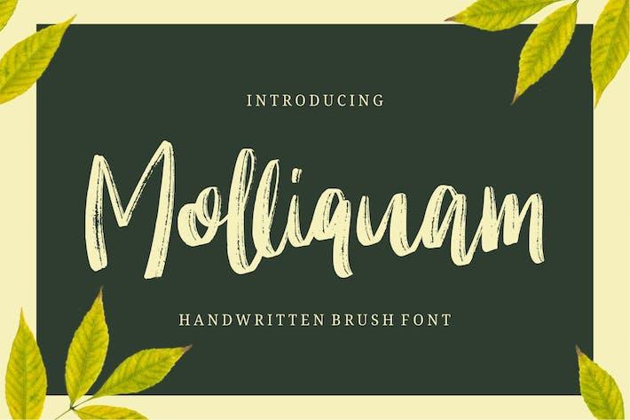 Thumbnail for Molliquam
