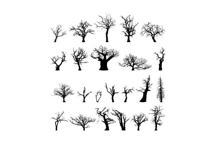 Thumbnail for collection d'arbres d'hiver