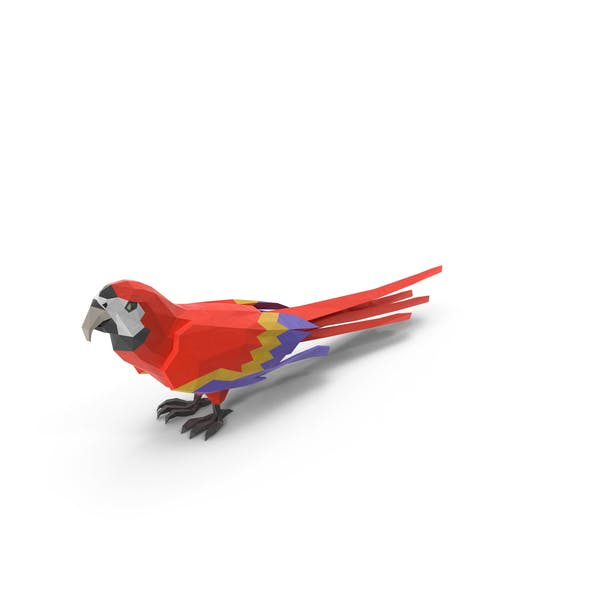 Thumbnail for Low Poly Parrot