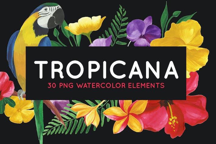 Thumbnail for 30 Tropical Floral Watercolor Elements
