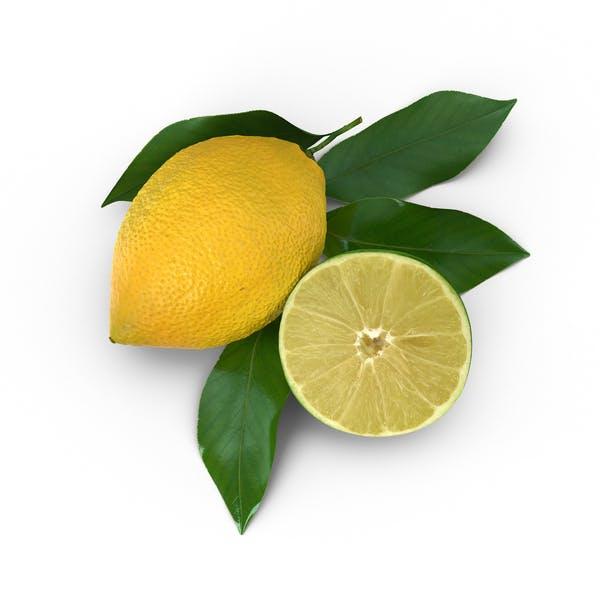 Thumbnail for Лимон и нарезанный лайм