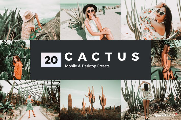 Thumbnail for 20 Cactus Lightroom Presets and LUTs