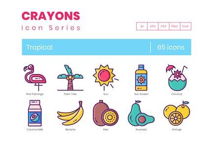 65 Tropical Line Icons (AI, EPS, PDF, PNG, SVG)
