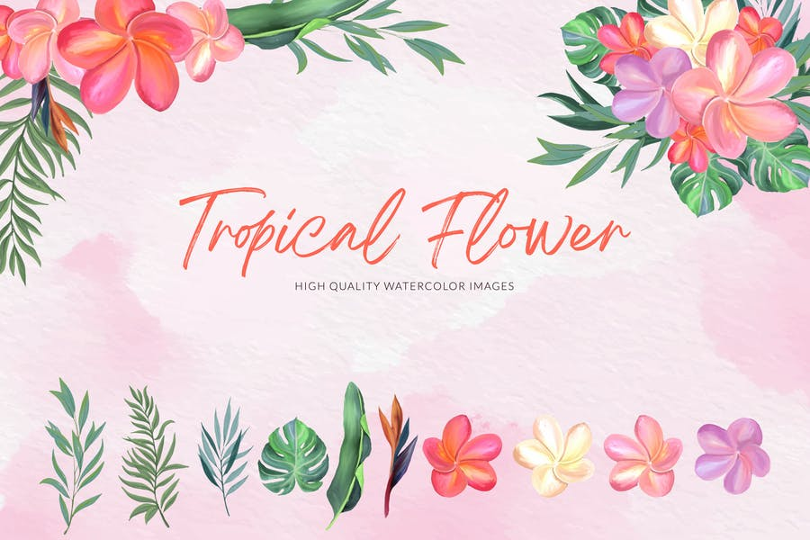 Tropical Flower Watercolor