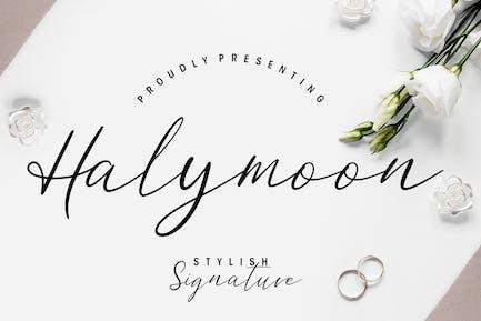 Halymoon Stylish Wedding Font