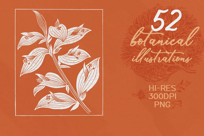 Thumbnail for 52 botanische Illustrationen