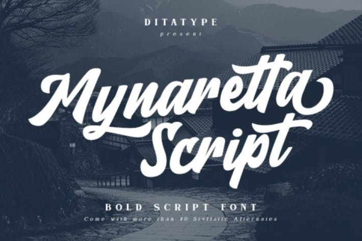Thumbnail for Guión Mynaretta