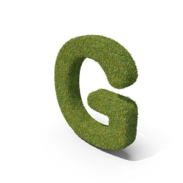 Трава заглавная буква G