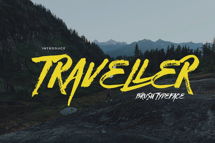 Thumbnail for Traveller