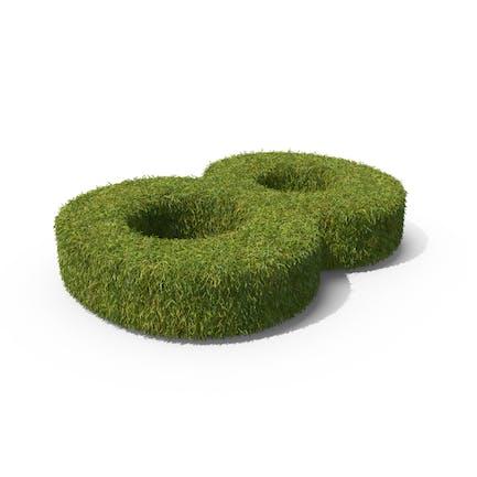 Grass Número 8 Ground