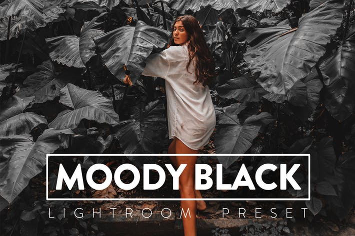 10 пресетов Moody Black Lightroom